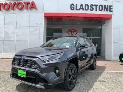 2019 Toyota RAV4 (Gray)