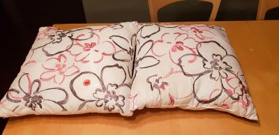 $1 for 2 pillows - discoloration in areas- will need washed