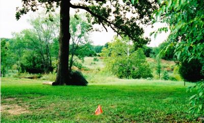 1.15 acre lot with 2 city water & 2 electricity (ideal for duplex!) on property