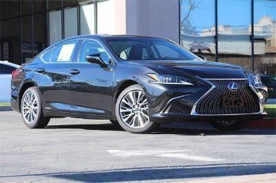 2019 Lexus ES (caviar)