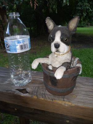 Vintage ceramic heavy Boston Terrier statue taking a bath