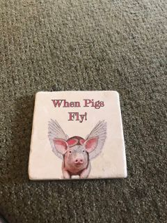 When pigs fly water absorbent coaster