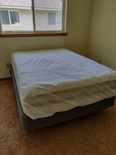 Full Size Bed, Box Spring, Frame, and a Waterproof Bed Bug Cover.