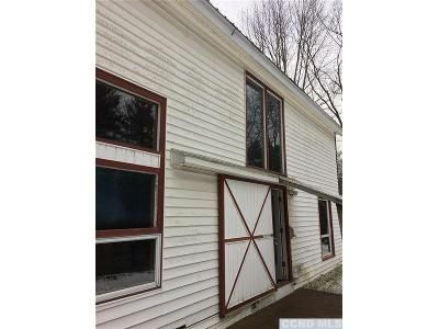 2 Bed 1.5 Bath Foreclosure Property in Canaan, NY 12029 - Peaceful Valley Rd