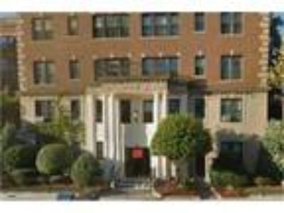 Boston College 1999 Comm Ave! Modern Three BR condo street views, huge rooms!