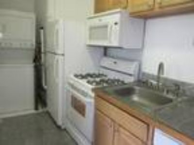 Captivating Four BR Apartment near the T Heat and Hot Water Inc Spacious Rooms