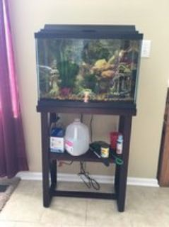Fish Tank, Accessories, and Fish