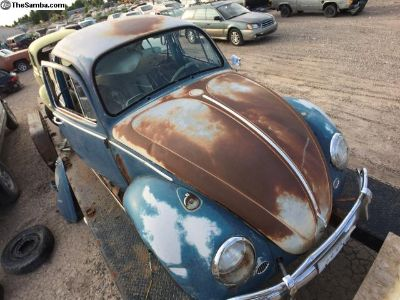 1966 Patina Project Bug.