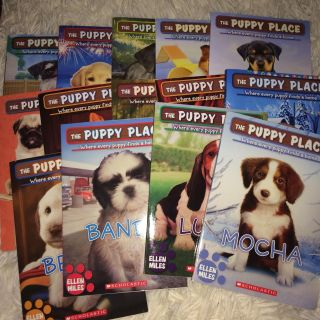 Scholastic reader books puppy palace & kitty corner