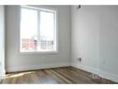 Four BR Two BA In Brooklyn NY 11216