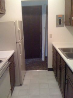 craigslist apartments for rent in albion mi