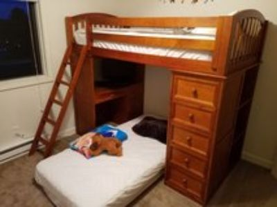 Twin bunk bed/loft with desk and shelves