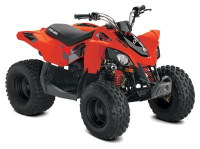 2020 Can-Am DS 90 ATV Kids Pikeville, KY