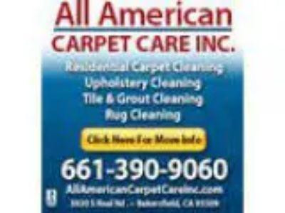 All American Carpet Care Inc