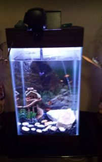 10 gal fish tank with everything but the water and fish