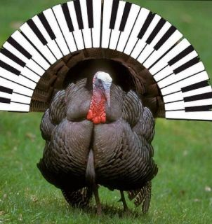 Please Remember to Have Your Piano Tuned for Thanksgiving in the Quad Cities!