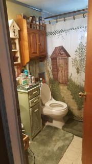 Country bath shower curtain/wall hanging and small decorative outhouse