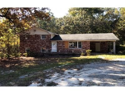 3 Bed 2 Bath Foreclosure Property in Gaston, SC 29053 - Fish Hatchery Rd
