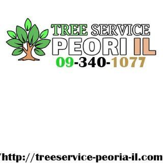 Johns Tree Service