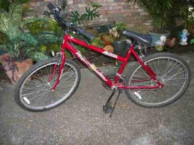 $50 Roadmaster Elevation Bicycle