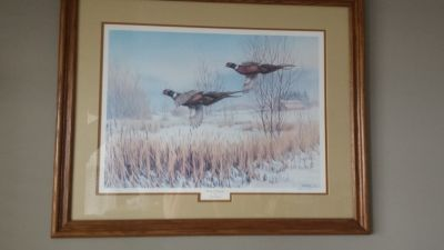 "Wildlife Print - ""Wetland Ringnecks"""