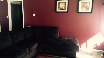 $370 super cute apt. Female roommate wanted