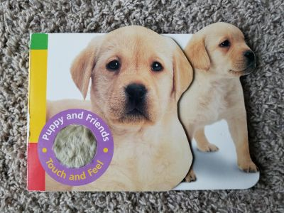 Puppy and Friends Touch and Feel. Hard Pages. EUC.