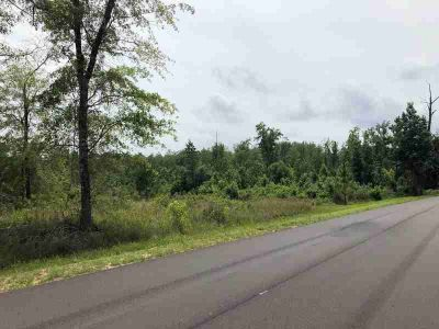 25 AC Rock Creek Road Wing, Parcel # 1908270000001002 and