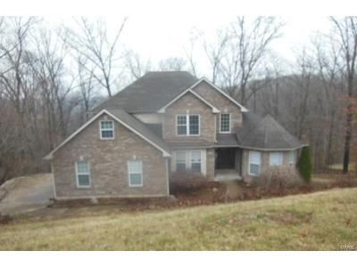 Foreclosure - Forest Glen Dr, Pacific MO 63069