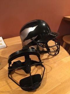 Face mask and helmet