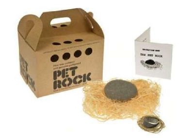 Silly Gag Gift Pet ROCK for Sale (Original pet shop style