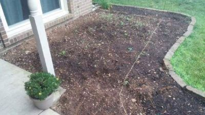 Laying mulch/clean out flower/mulch beds and much more