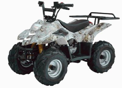 Powerwheels Off Road 110 cc Kids ATV