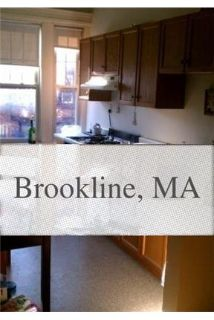 Brookline - Gorgeous 2 bedroom with a HUGE eat in kitchen. Cat OK!