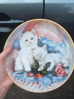 White cat plate