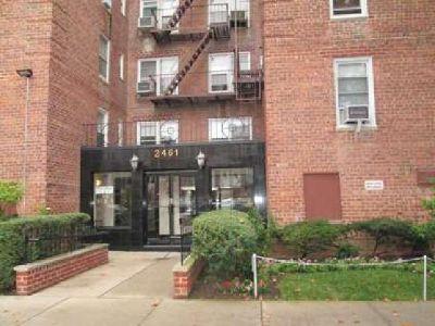 2461 East 29 St. #6F