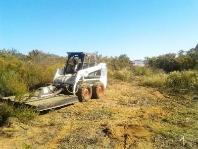 Brush Clearing, Land Clearing, Weed Abatement Services