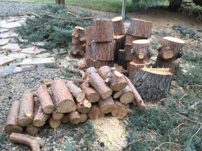 Wood for sale