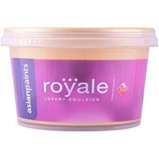 V S Enterprises - Royal Emulsion Dico Painting Spray Services