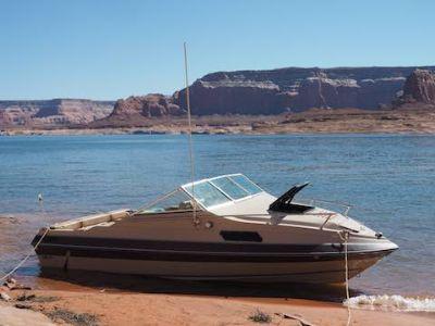 19' Cuddy Cabin I/O Lake Powell boat