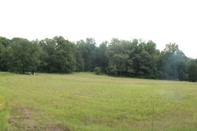 5 acres of piece and quiet