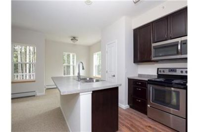 1 bedroom Apartment - Nestled in a quiet wooded area above Shelburne. Washer/Dryer Hookups!