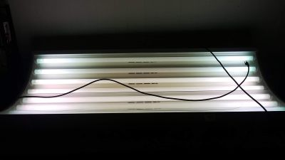 Wolfe tanning bed