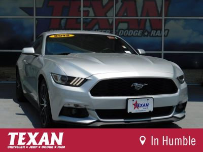 2015 Ford Mustang EcoBoost Premium (Silver)
