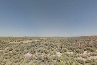 Vacant Acreage For Sale In Costilla County, Colorado