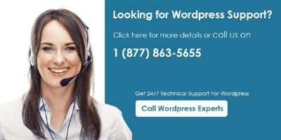 WordPress Tech Support +1-877-863-5655
