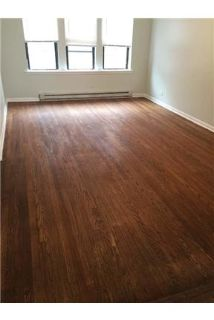 Clean, modern hardwood floors. Cat OK!