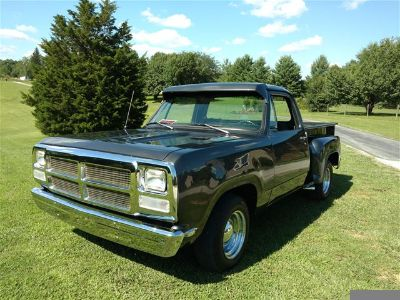 1973 Dodge D100