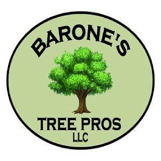Barone's Tree Pros