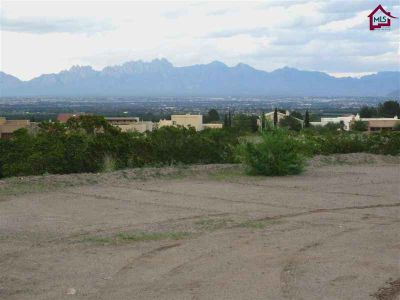 1644 Arco De Goya Las Cruces, Are you looking for a lot to